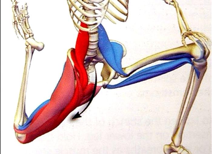 psoas-stretch